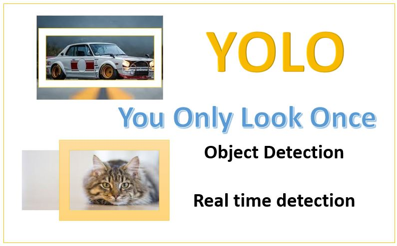Why developers use YOLO for real-time object detection