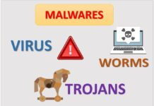What is Virus, Worms and Trojans