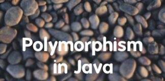 what is polymorphism in java